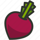 beetroot, food, radish, vegetable icon