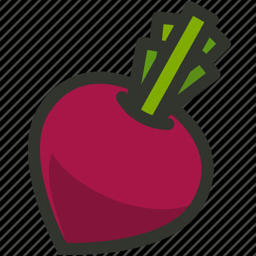 Beetroot, food, vegetable, radish icon