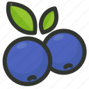 berry, blueberries, blueberry, food, fruit icon
