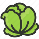 cabbage, food, lettuce, organic, vegetable icon