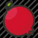 food, fruit, juicy, organic, pomegranate icon