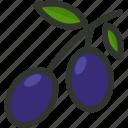 food, fruit, natural, olive, olives