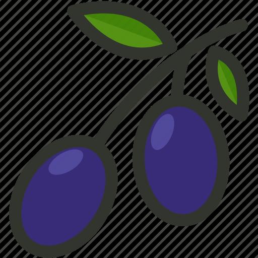 food, fruit, natural, olive, olives icon