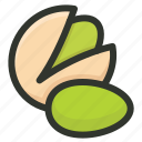 food, nut, nuts, pista, pistachio icon