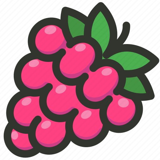 Food, fruit, currant, berry, raspberry icon