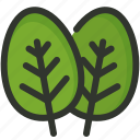 food, herb, leaf, plant, spinach, vegetable icon