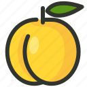 apricot, food, fruit, peach, tropical icon