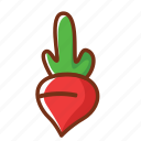 breakfast, dinner, food, fruit, health, nutrition, radish icon