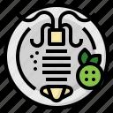 animal, food, grill, lemon, roast, seafood, squid
