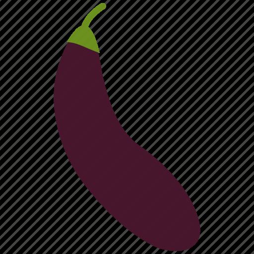 eggplant icon icon