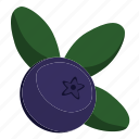 berry, blueberry, fresh, fruit icon