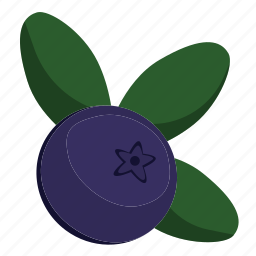 berry, blueberry, fresh, fruit icon