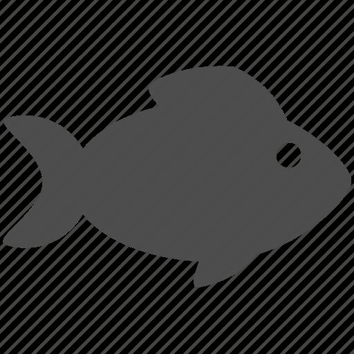 fish, food, sea icon