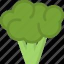 broccoli, cooking, food, kitchen, vegetable