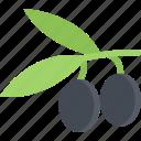food, fruit, healthy, olives, vegetable
