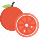 food, fresh, fruit, orange icon