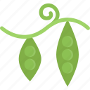 food, healthy, kitchen, peas, vegetable icon