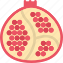 food, fruit, pomegranate, vegetable icon