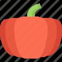 food, pumpkin, vegetable, vegetarian