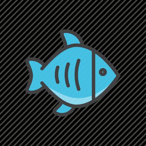 fish, fresh, health, sea icon