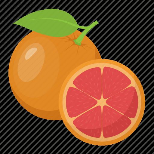 Citrus, diet, food, fruit, orange icon - Download on Iconfinder