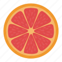 citrus, citrus slice, half of citrus, orange, orange slice icon