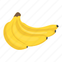 bananas, bunch of bananas, food, fruit, healthy diet icon