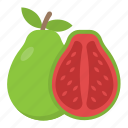 food, fruit, guava, half guava, tropical fruit icon