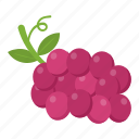 bunch of grapes, food, fruit, grapes, natural food icon