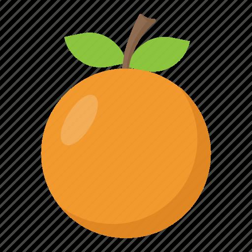 citrus, diet, food, fruit, orange icon