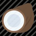 coconut, food, fruit, nut, tropical food