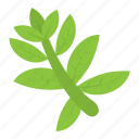 ewedu leaf, green leafy vegetable, green vegetable, leafy vegetable, vegetable icon