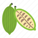 bitter gourd, bitter melon, natural diet, natural food, vegetable icon