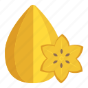 carambola, fruit, healthy food, ripe carambola, star fruit icon