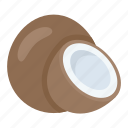 coconut, food, fruit, nut, tropical food icon