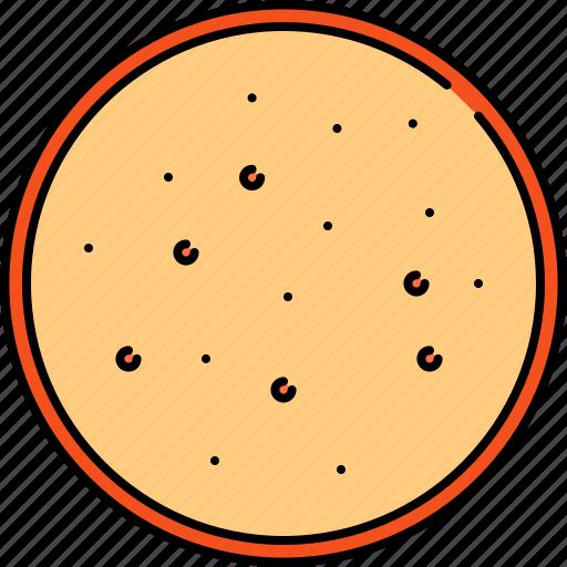 bread, breakfast, round, slice, wheat icon