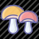 fungi, fungus, mushroom, shiitake mushroom, toadstool icon
