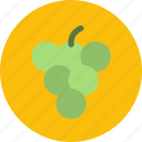 food, fruit, grape, vegetable icon