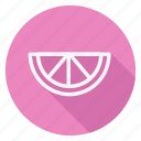 appliance, cooking, drinks, fruit, gastronomy, kitchen, watermelon icon