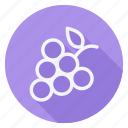 appliance, cooking, drinks, food, fruit, gastronomy, grapes icon