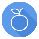 appliance, cooking, drinks, food, fruit, orange, utensils icon