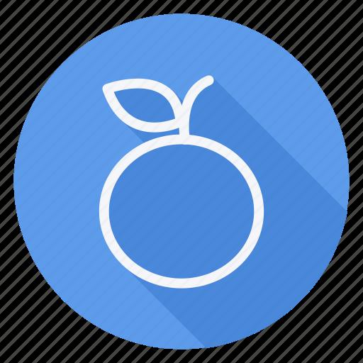 appliance, cooking, drinks, food, fruit, orange, utensils icon