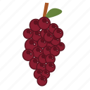 food, fruits, grape, health, healthy, vegan icon
