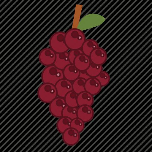 food, fruits, grape, health, healthy, vegan icon