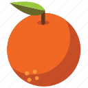 food, fruit, fruits, health, healthy, orange, vegetables icon