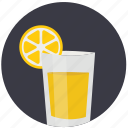 drink, food, fresh, health, juice, orange, tropical icon