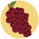 food, fresh, fruit, fruits, grape, healt, wine icon