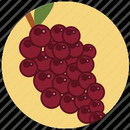 food, fresh, fruit, fruits, grape, healt, wine icon