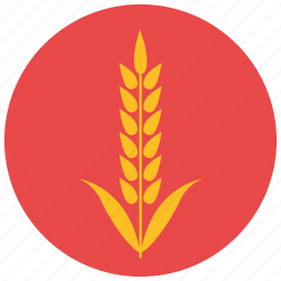 farm, food, harvest, pastry, product, wheat icon