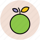 citrus, food, fruit, healthy food, orange, organic icon